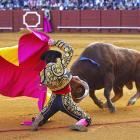 Stierenvechter mag act niet als intellectueel eigendom laten registreren